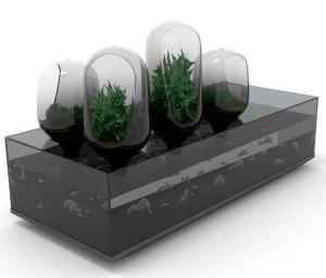 Grow fish and plants