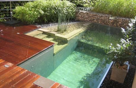 The natural swimming pool momeld modern living - Mini piscine naturelle ...